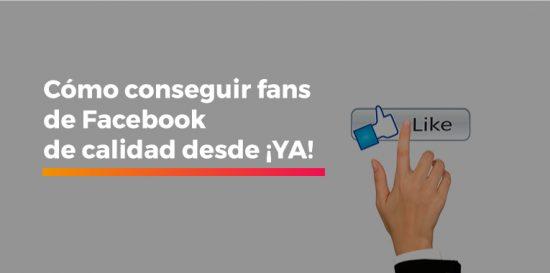 fans en Facebook